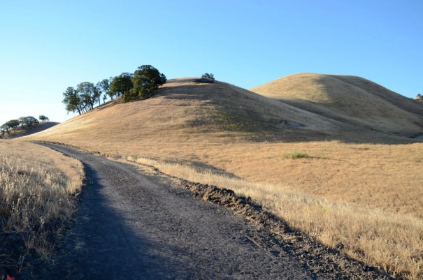 The beautiful hills at Contra Loma Park in Antioch.