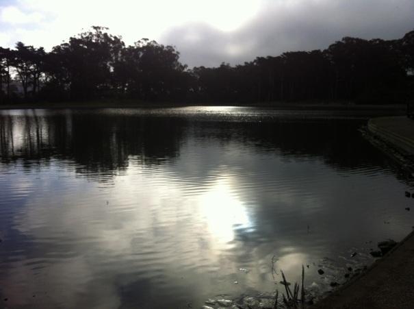 At the start of the 2nd Half Marathon near Spreckel's Lake  in Golden Gate Park