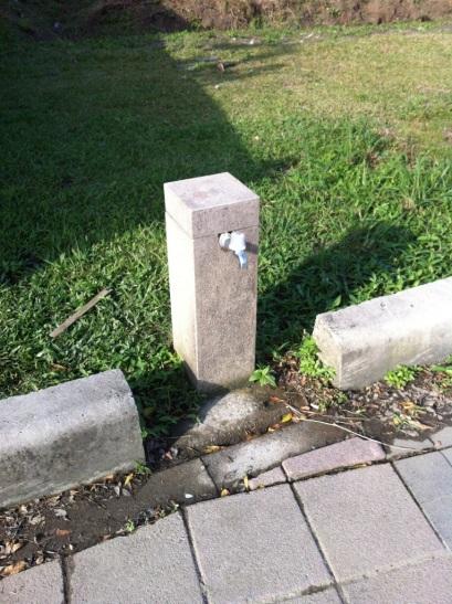 Potable water? Not sure...