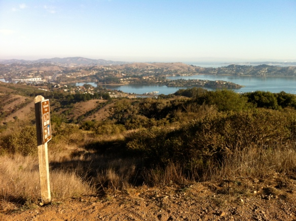 At the top of Marincello, with views of Tiburon and Sausalito.