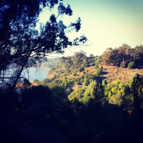 View from Two Rocks Trail at Lake Chabot.