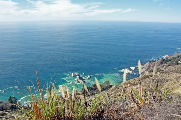 View of the ocean from the Ewoldsen Trail.