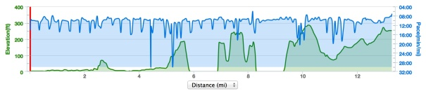 Elevation and pace data from my Garmin.