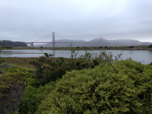 First views of the Golden Gate Bridge.