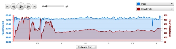An example of the crazy HR data from the Garmin HRM.  Don't worry - I won't show photos of the chafing.