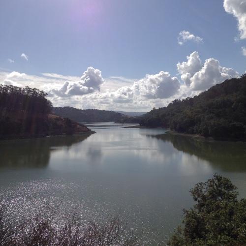 A gorgeous day at Lake Chabot. #trailrunlove