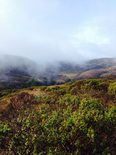 From our trail run in the Marin Headlands.  The rain eventually stopped and the clouds lifted to give us a very pretty view!  (photo credit: JT)