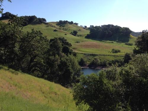 Gorgeousness at Briones Reservoir