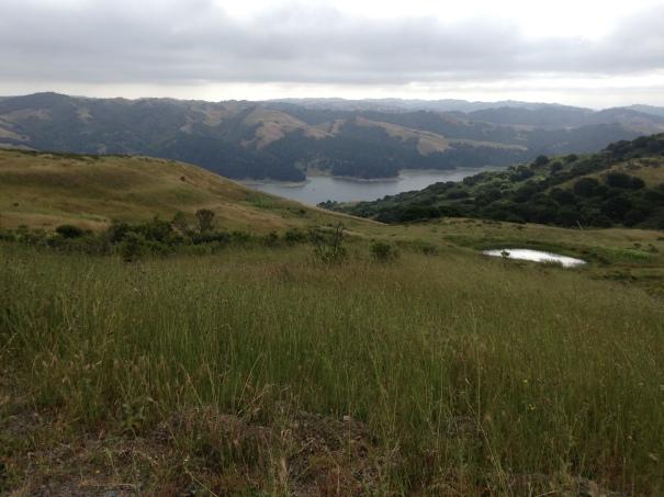 The San Pablo Reservoir from Nimitz Way.