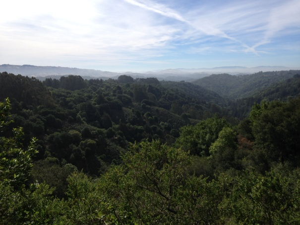 Beautiful views from Graham/Dunn trails.