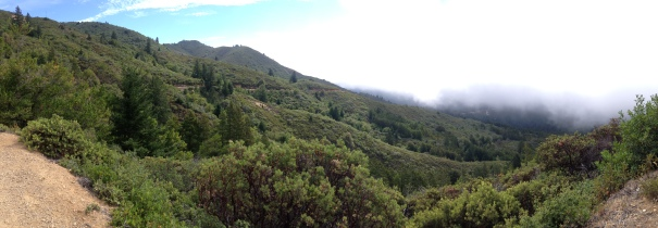 Panorama taken about halfway up to Mt. Tam