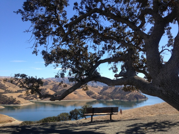 At Del Valle Regional Park in Livermore
