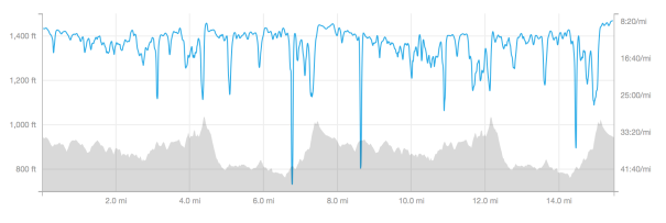 My Garmin stats for elevation and pace, plotted on Strava.